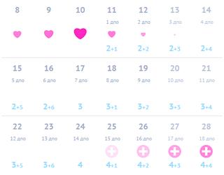 Календарь беременности по неделям и дням