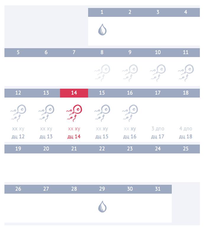Калькулятор «Календарь овуляции и зачатия» при нерегулярном (плавающем) цикле