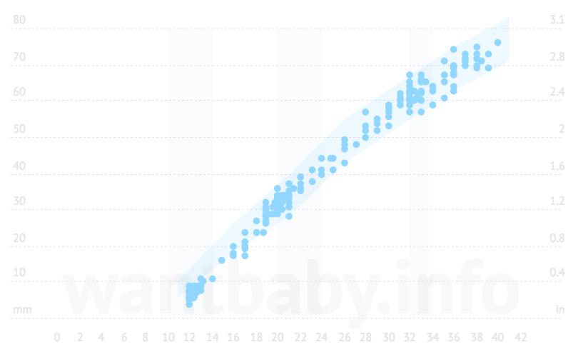 Калькулятор «Длина бедра (ДБ) плода при УЗИ» по неделям беременности
