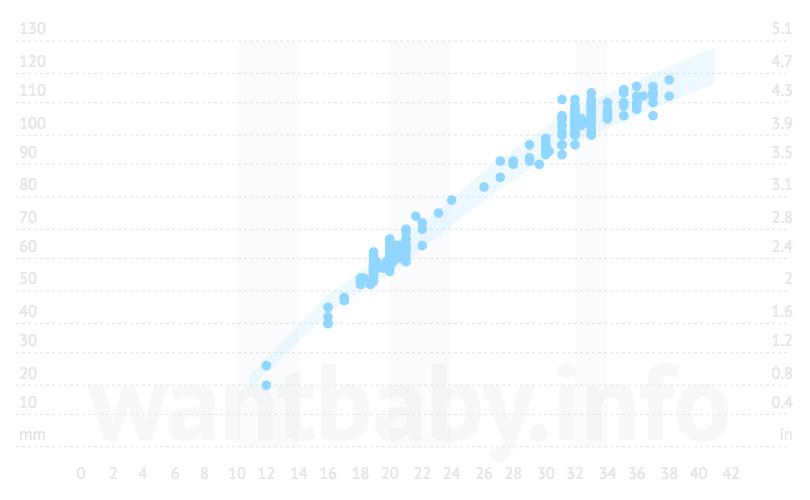 Калькулятор «Лобно-затылочный размер (ЛЗР) плода при УЗИ» по неделям беременности